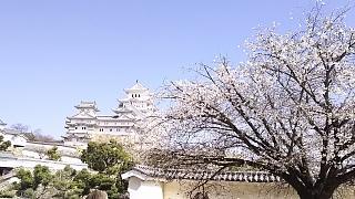 20160322姫路城周囲(その19)