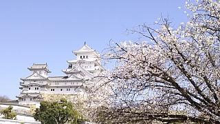 20160322姫路城周囲(その20)