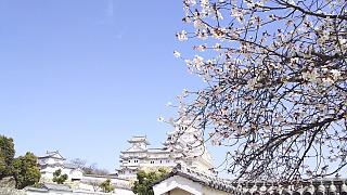 20160322姫路城周囲(その23)