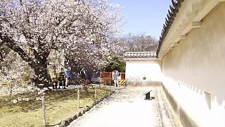 20160322姫路城周囲(その24)