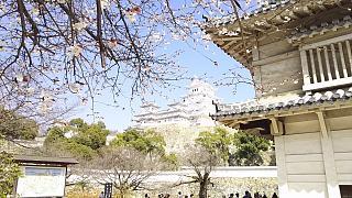 20160322姫路城周囲(その28)