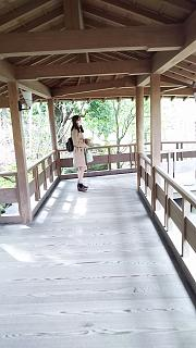 20160322好古園(その9)
