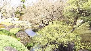 20160322好古園(その24)