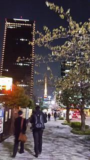 20160327夜景(その1)