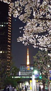 20160327夜景(その2)