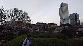 20130331増上寺(その11)