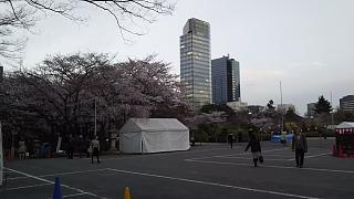 20130331増上寺(その20)