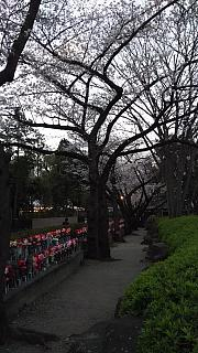 20130331増上寺(その21)