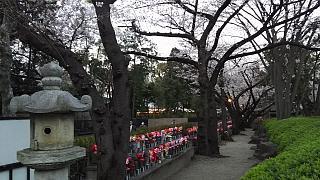 20130331増上寺(その22)