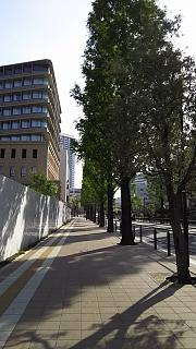 20160425通勤路(その2)