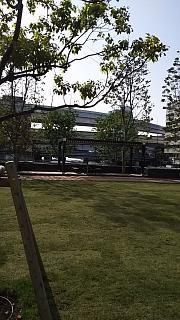 20160425通勤路(その4)