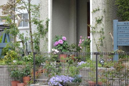 garden2016418-1.jpg