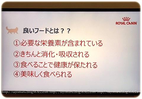sayomaru16-684a.jpg