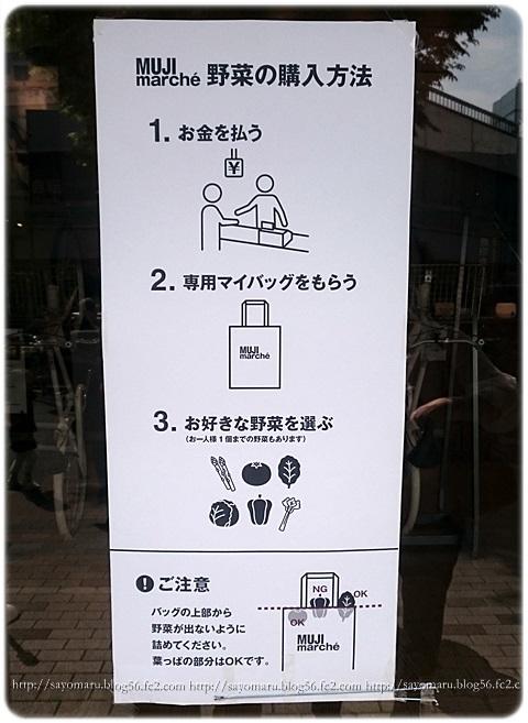 sayomaru16-916.jpg