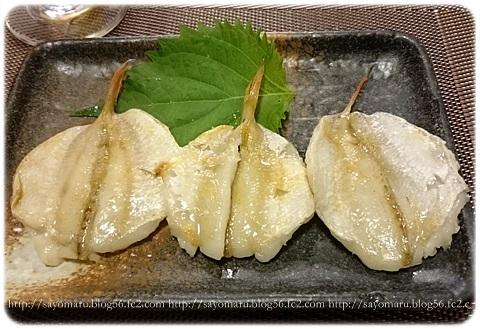 sayomaru17-143.jpg