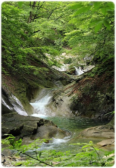 sayomaru17-552.jpg