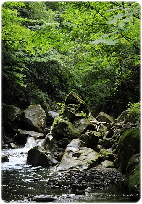 sayomaru17-558.jpg