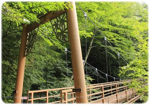 sayomaru17-582.jpg
