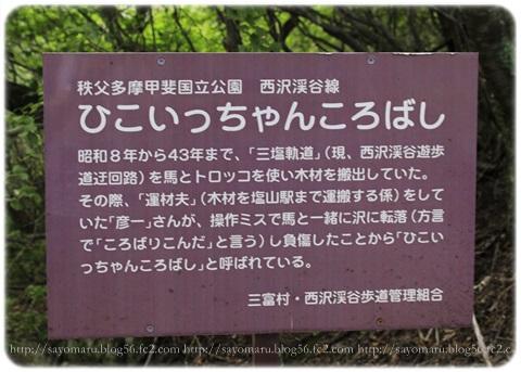 sayomaru17-583.jpg