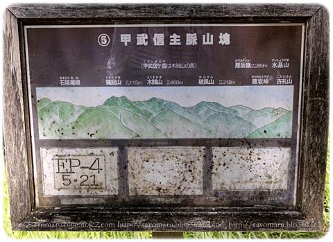sayomaru17-593.jpg
