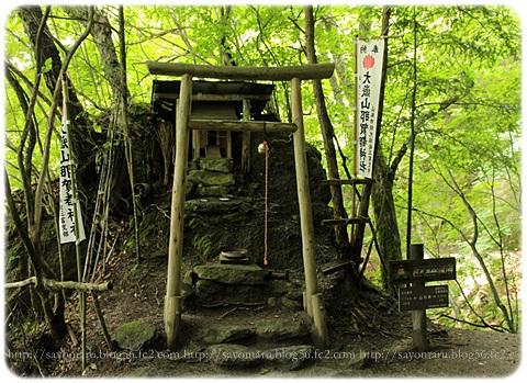 sayomaru17-594.jpg