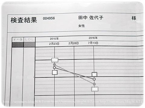 sayomaru17-620.jpg