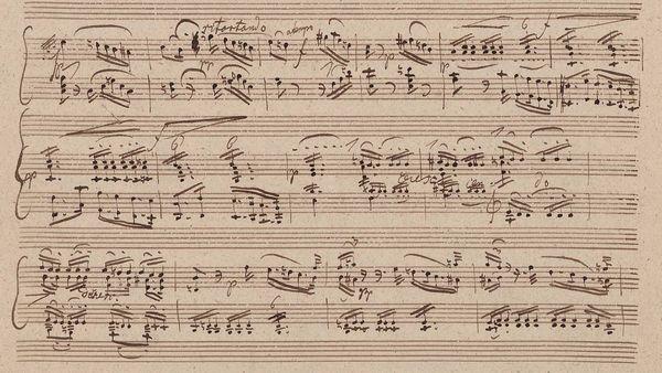 D567-II-manuscript