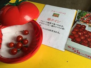 石坂農園4