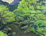 緑陰の高麗川