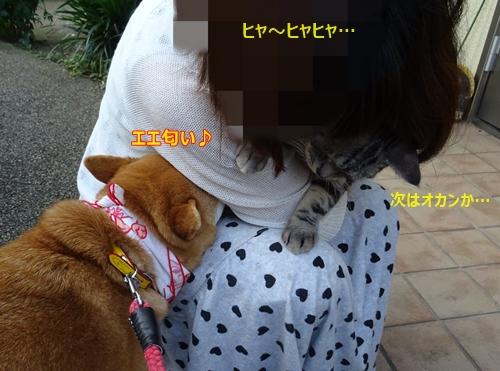 7イイ匂いぃ