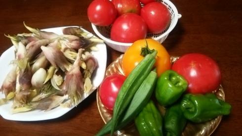 2884野菜