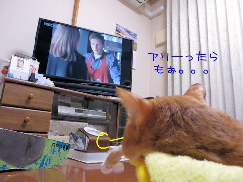 テレビっコ