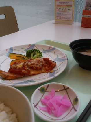 OWL、B定食鮭のトマトチーズ焼き+選べる小鉢(揚げ焼売)3