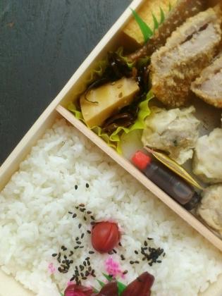 上野駅ザガーデン万葉軒ひれかつしゅうまい弁当2