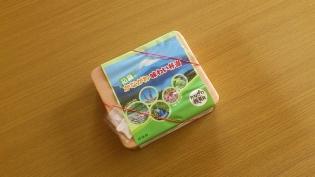 初夏のかながわ味わい弁当 (神奈川地区・期間限定)3