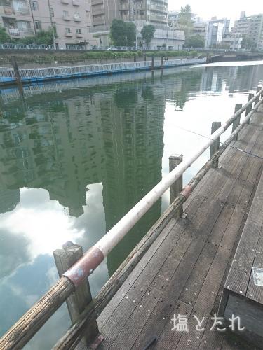 DSC_0462_20160917_01_横十間川ハゼ釣り