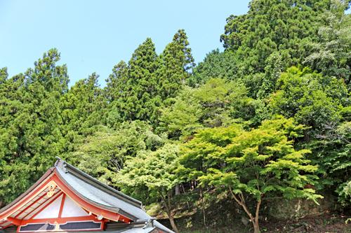 金櫻神社 9月3日撮影