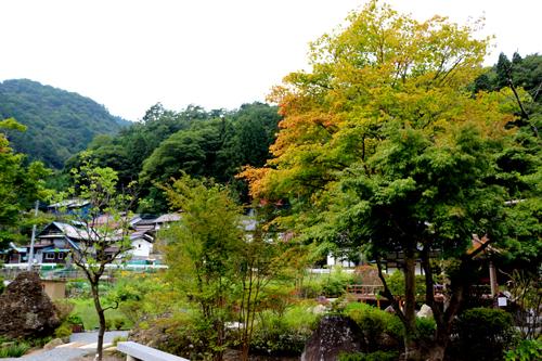 小紋の郷9月11日 (2)