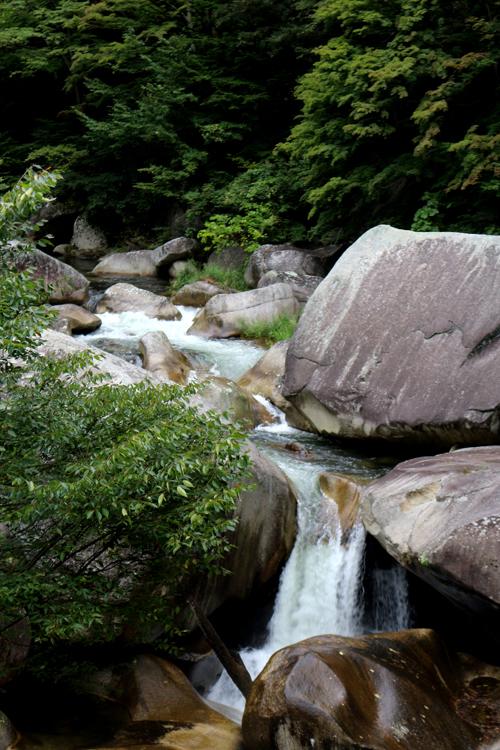渓流の眺め 918