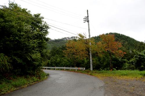金櫻神社から黒平への道 918 (2)