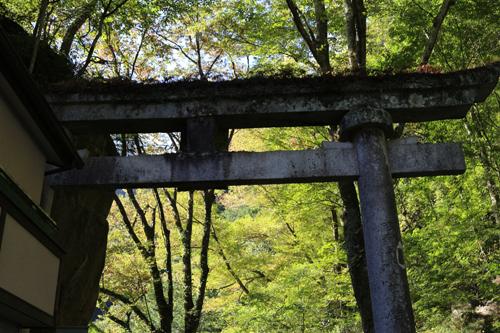 201210116 滝上金櫻神社鳥居