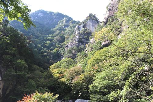 201210116渓谷道の様子 (3)