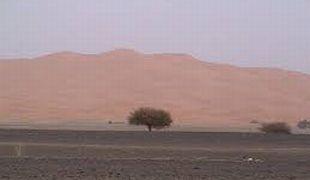 砂漠の蜃気楼