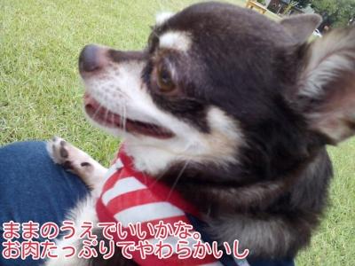 16-09-12-01-50-32-059_deco.jpg