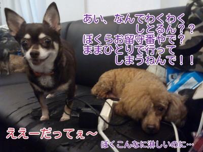 16-09-18-13-56-03-399_deco.jpg