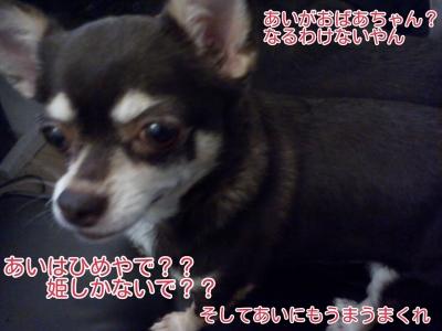 16-10-19-16-01-51-613_deco.jpg