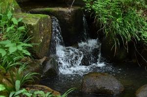 日本庭園内の小さな滝