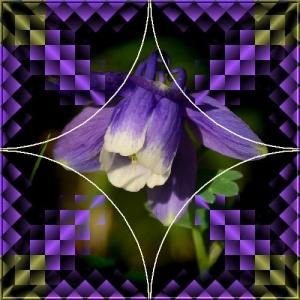 thumbnail_DSC_8408-2xx.jpg