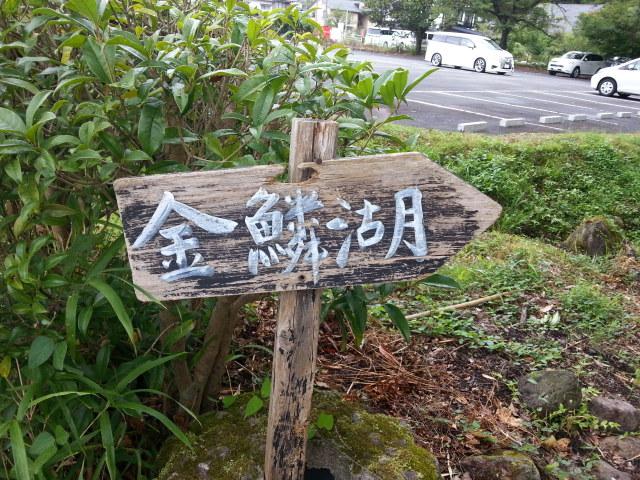 20160827_091736.jpg