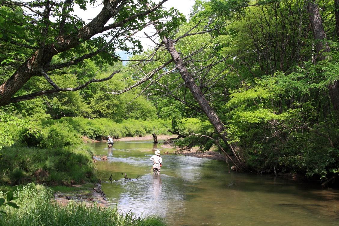 湯川と釣り人 - 未分類